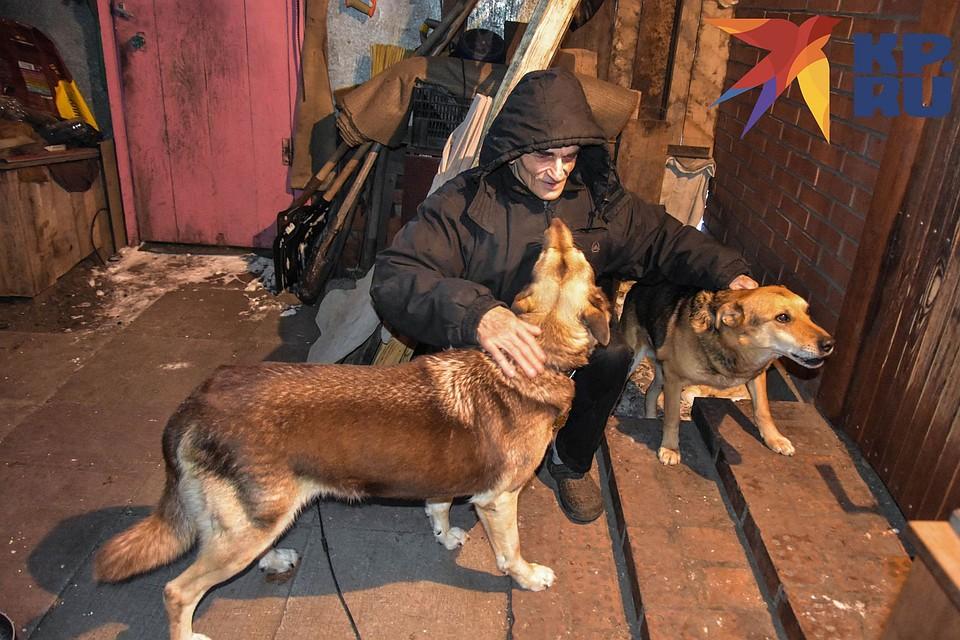 У Сергея живут четыре собаки. Фото: Алена МАРТЫНОВА