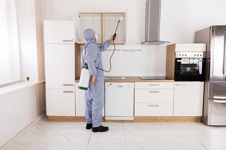 В среднем обработать однокомнатную квартиру стоит 1400 рублей