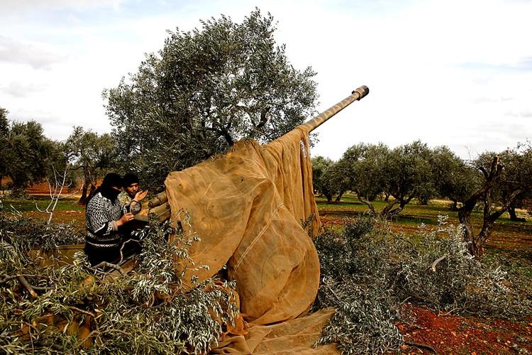 Боевики пользуются поддержкой Турции