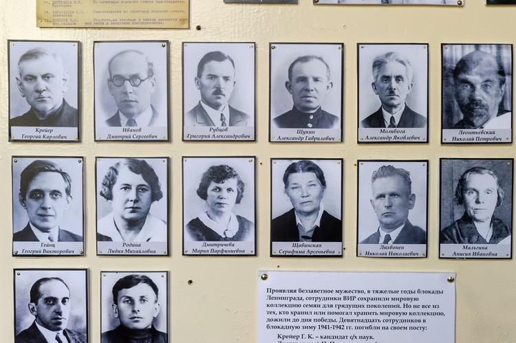 В блокаду от голода умерло 19 сотрудников института. Никто из них не посмел взять из коллекции ни одного зернышка.