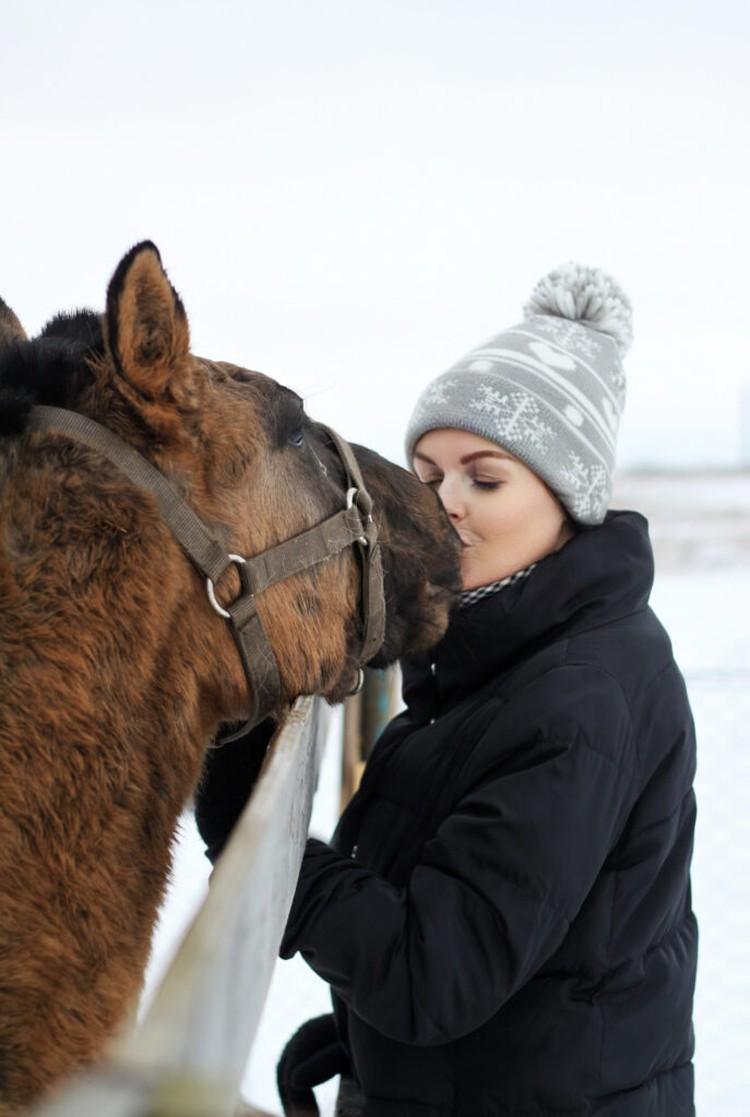 В фонде у лошадок начинается новая, счастливая жизнь. Фото: БФ «Я свободен».
