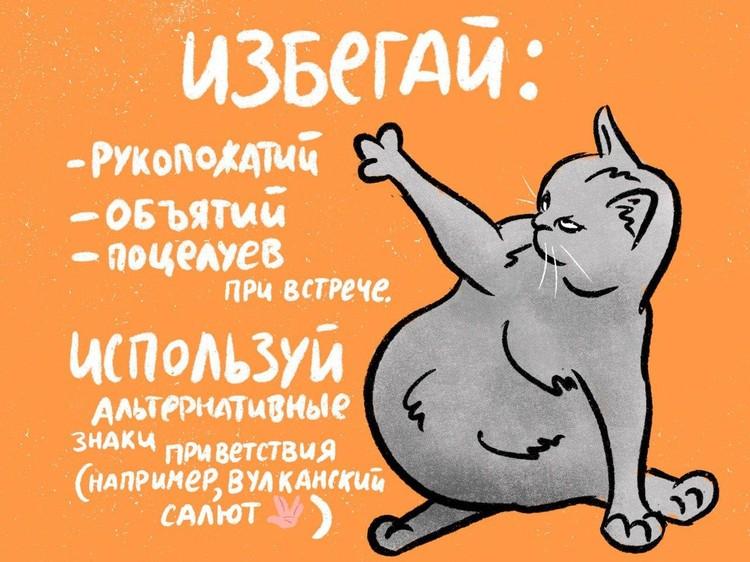 В Петербурге появились коты, которые объяснили, как защититься от инфекции / Фото: ИТМО