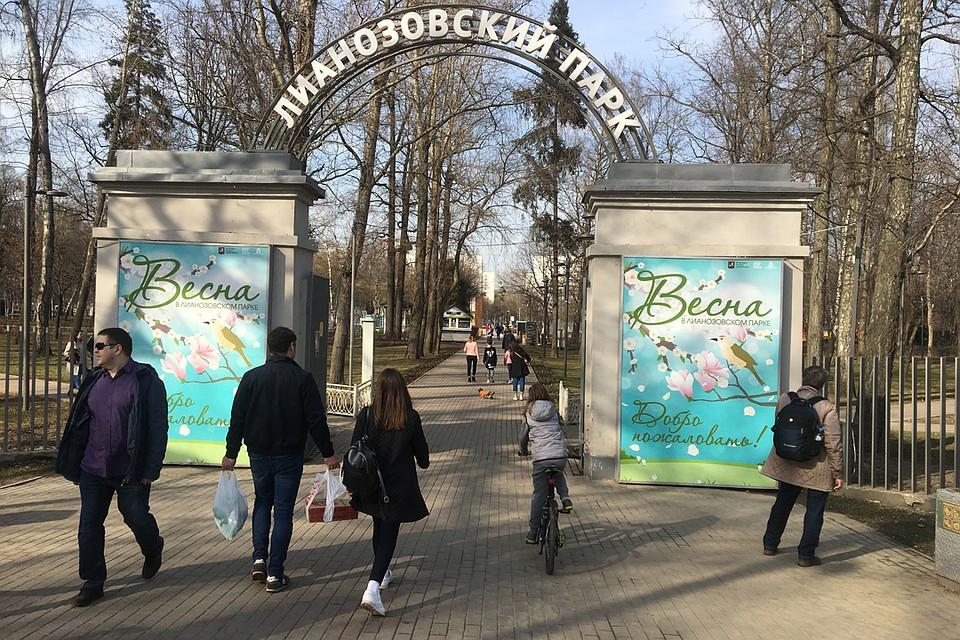 Народ устремился в парки, которые почему-то не закрыли вопреки распоряжению. Фото: Александр РОГОЗА
