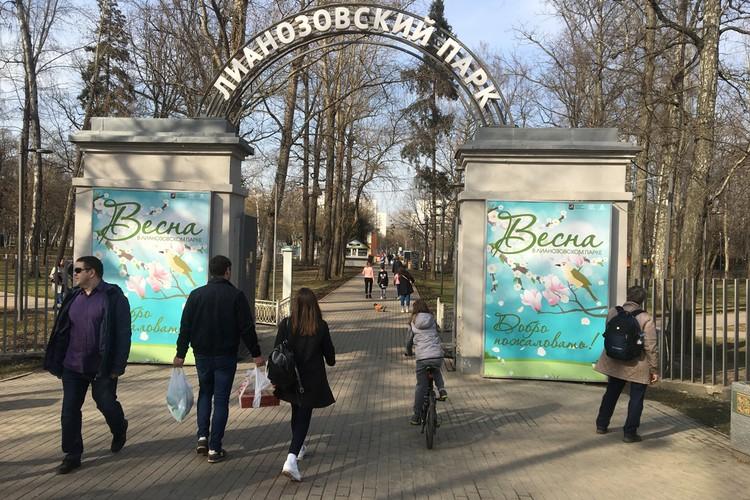 Народ устремился в парки, которые почему-то не закрыли вопреки распоряжению.