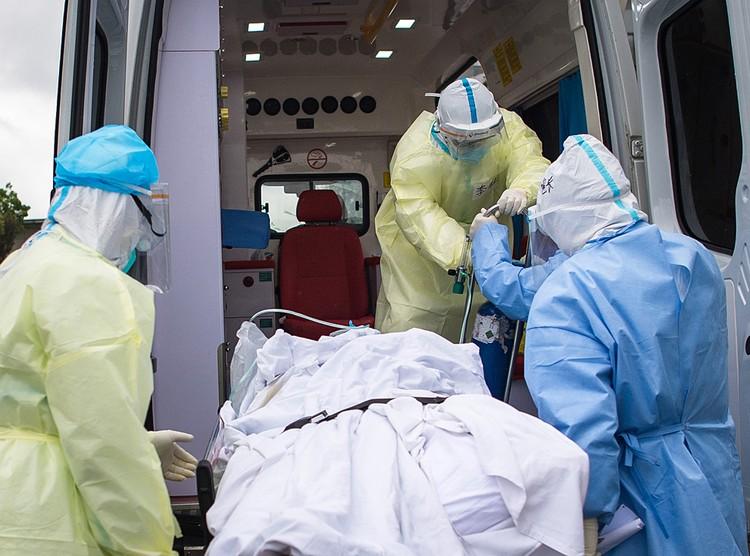 B декабре 2019 в Китае объявился новый коронавирус, источником которого стали летучие мыши