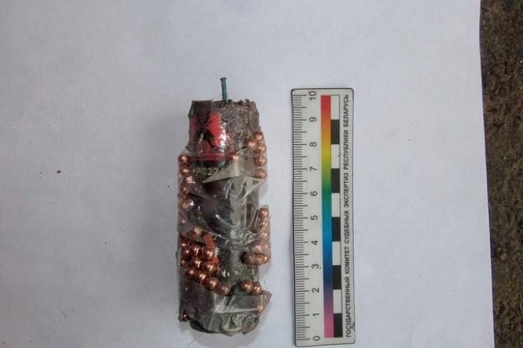 Преступник принес с собой самодельные взрывные устройства. Фото: УСК по Могилевской области.