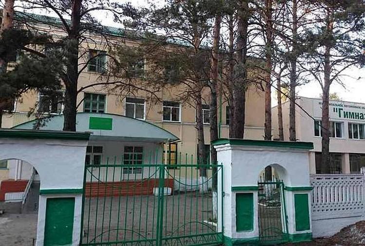 Гимназия, где училась Лиза Адаменко