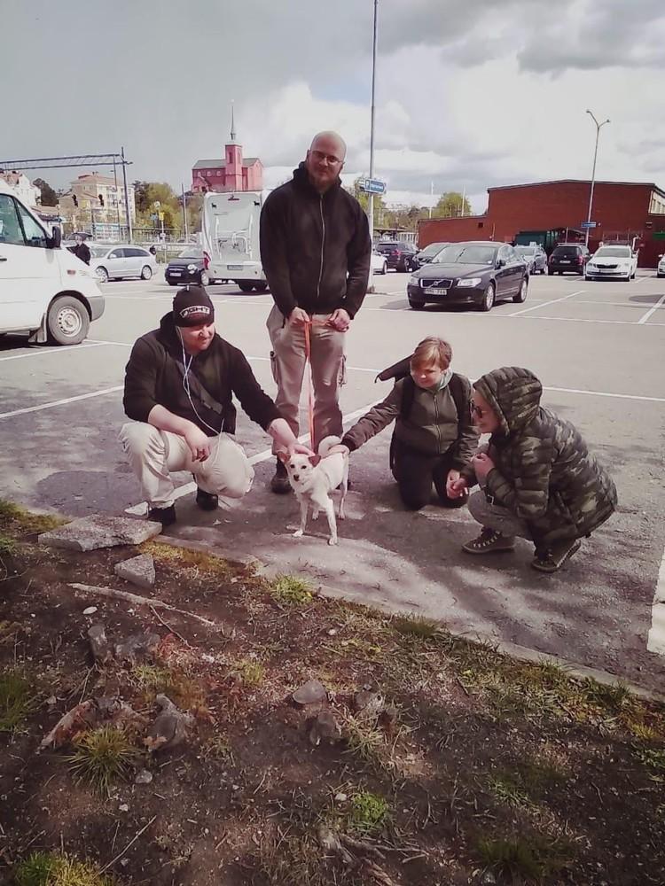 """Чтобы эта встреча состоялась. волонтерам пришлось потратить не только много денег, но и нервов. Но оно того стоило! Фото: группа """"Помощь Бучу и бездомным животным"""""""
