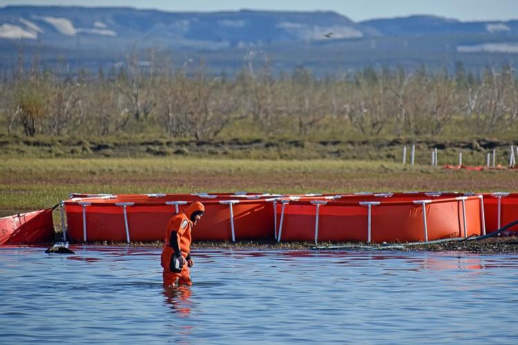 Сотрудник МЧС РФ во время ликвидации последствий разлива топлива на реке Амбарная в районе Норильска. Фото: Денис Кожевников/ТАСС