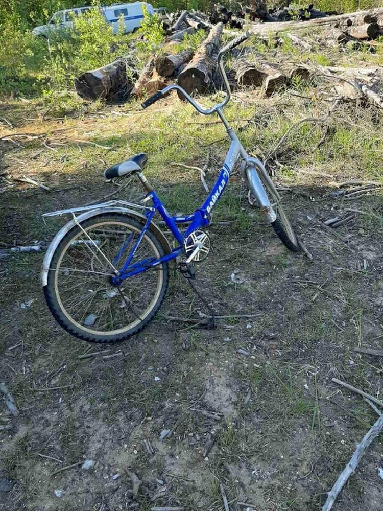 """Возле велосипеда, на котором уехал мальчик, нашли следы медведя. Фото: поисковый отряд """"Лиза Алерт""""."""