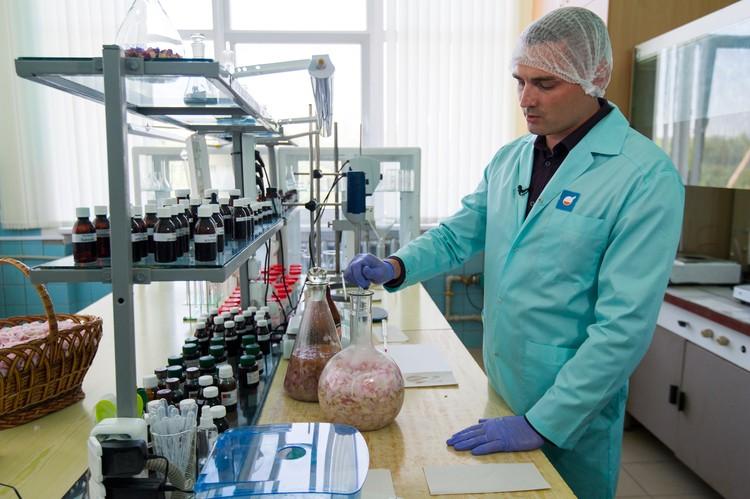 Технология приготовления экстракта схожа с рецептурой приготовления античного масла