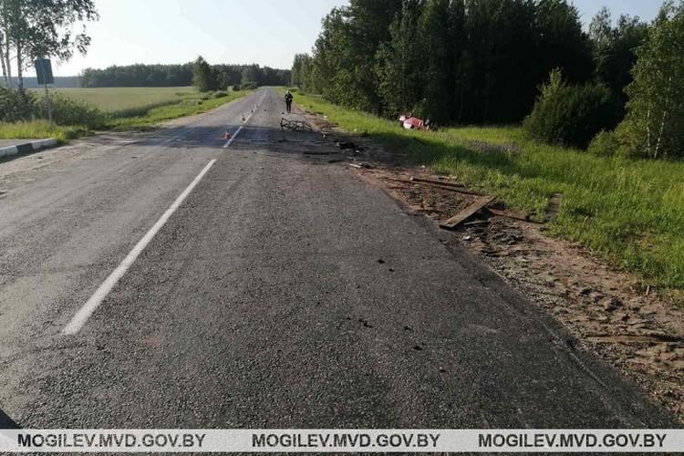 В аварии погиб 35-летний сельчанин, управлявший телегой. Фото: УВД Могилевского облисполкома.