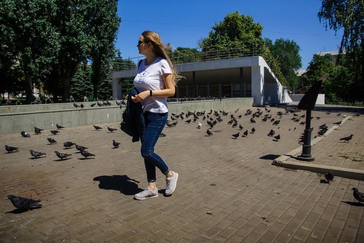 Ну и куда же без голубей