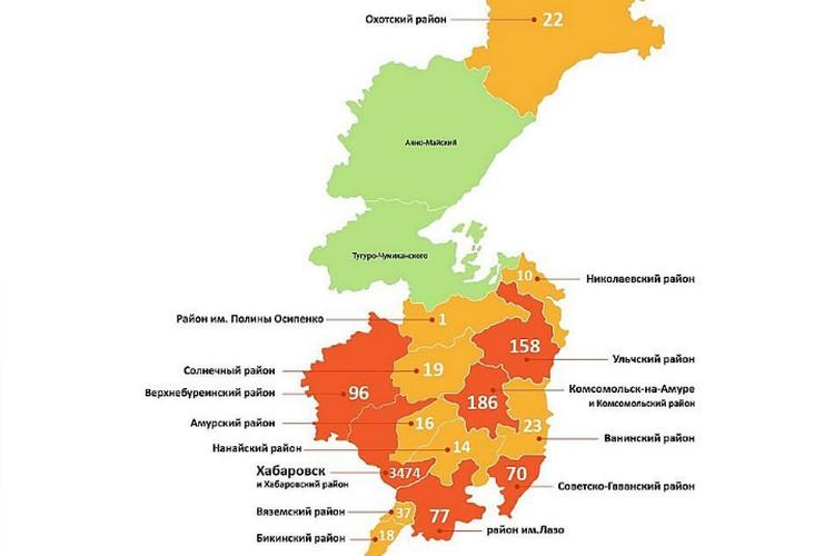 Статистика по Хабаровскому краю ФОТО: региональный минздрав