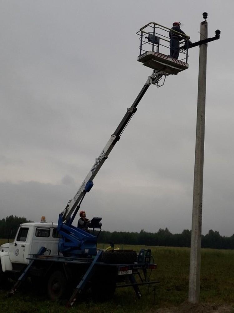 Энергетики устраняют обрывы линий электропередачи. Фото: Брестэнерго