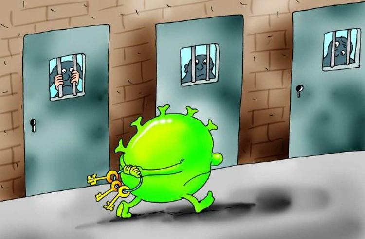 Вопрос дня: А у вас нервишки расшалились за время карантина?