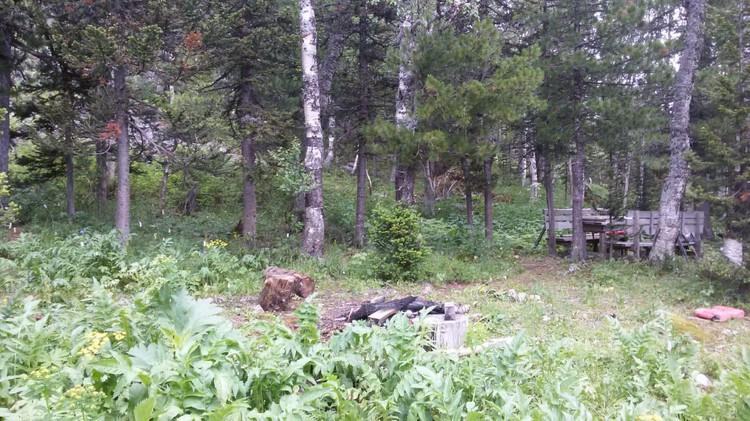 Здесь туристы разбили лагерь. Фото: ГСУ СК России по Красноярскому краю и РХ.