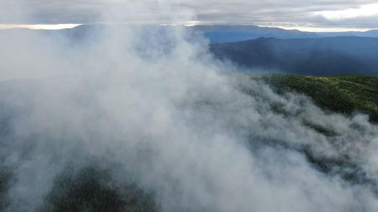 К 22 июля огонь распространился на площадь в 23 га. Фото: пресс-служба заповедника «Денежкин Камень»