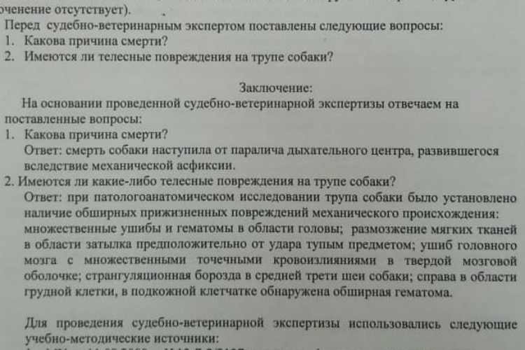 Заключение экспертизы. Фото: личный архив Екатерины Зубковой