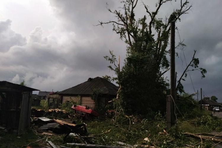 Сильным ветром поломало деревья и столбы линии электропередачи. Фото: Татьяна Шумайлова, vk.com/etotkirov