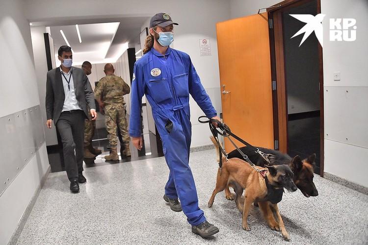 Среди прибывших спасателей - кинологи и их собаки, которые могут спасти чью-то жизнь.