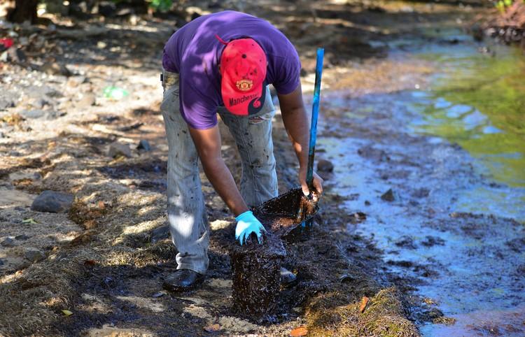 На береговой линии также ведутся работы по расчистке