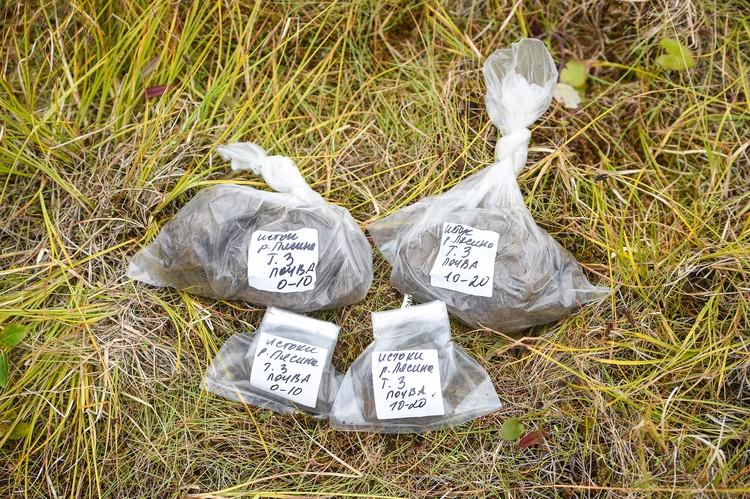 По возвращению из экспедиции ученые планируют определить фитотоксичность почвы. Они выделят микроорганизмы, которые смогут быть использованы для ликвидации последствий подобных аварий