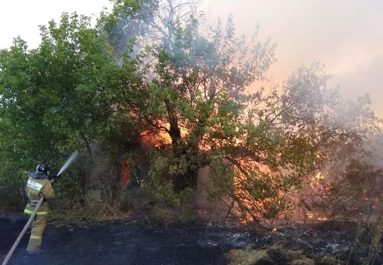Третий день на Дону пытаются потушить крупный пожар. Фото: ГУ МЧС России по РО.