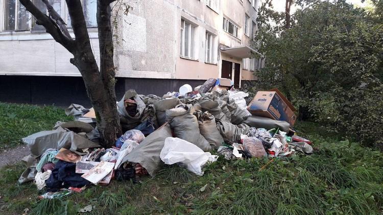 Гора мусора, которые выкинули из квартиры