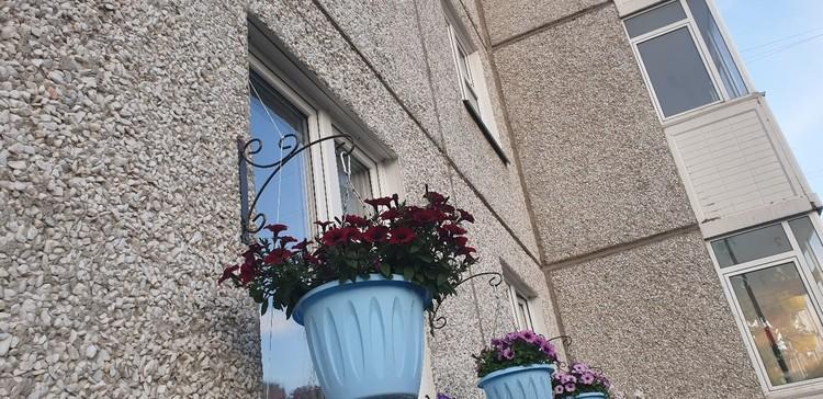 Цветы не только на балконе. Фото: Валентина Тремарева.