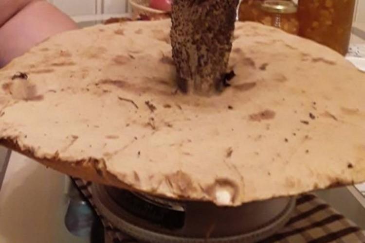 Так просто гриб в кастрюлю не положить, диаметр шляпки 35 сантиметров