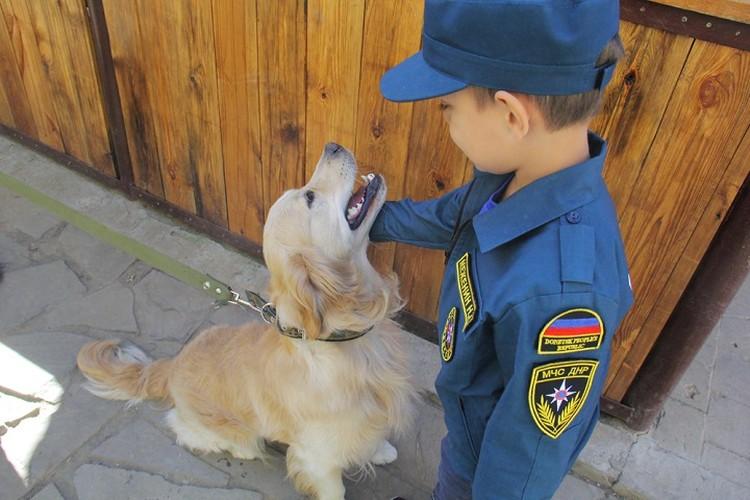 Никиту познакомили со специально обученными собаками по поиску людей и взрывоопасных предметов. Фото: dnmchs.ru