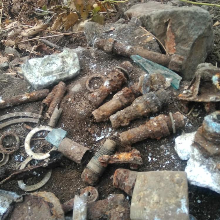 Активисты нашли огромное количество костей, личных вещей, частей самолета. Фото: «АвиаПоиск».