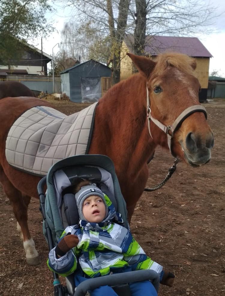 Ярослав смог покататься на лошади, как настоящий наездник