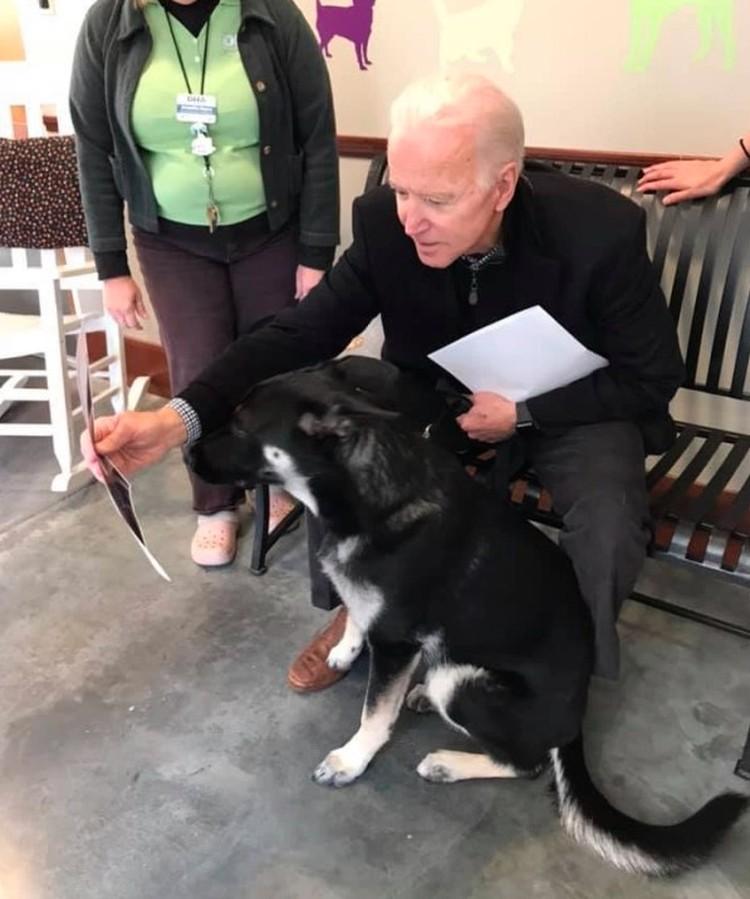 Джо Байден показывает псу фотографии.