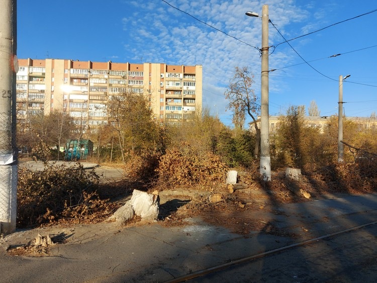 Деревья вдоль пути вырубили, часть обрезали. После вдоль пути высадят новые но с учетом охранной зоны.