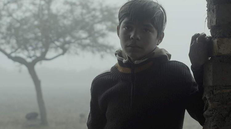 Спецприз жюри и премия лучшей актрисе (Мерседес Эрнандес) отошли не раз награжденной в этом сезоне (от Санденса до Салоников) мексиканской картине «Без особых признаков» (Sin señas particulares) Фернанды Валадез