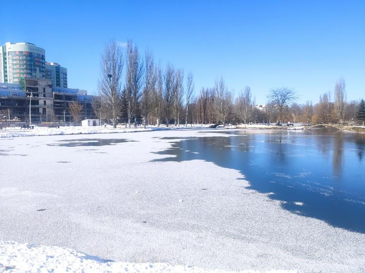 Почти весь пруд покрылся белой кромкой льда. Фото: Иван Курабцев