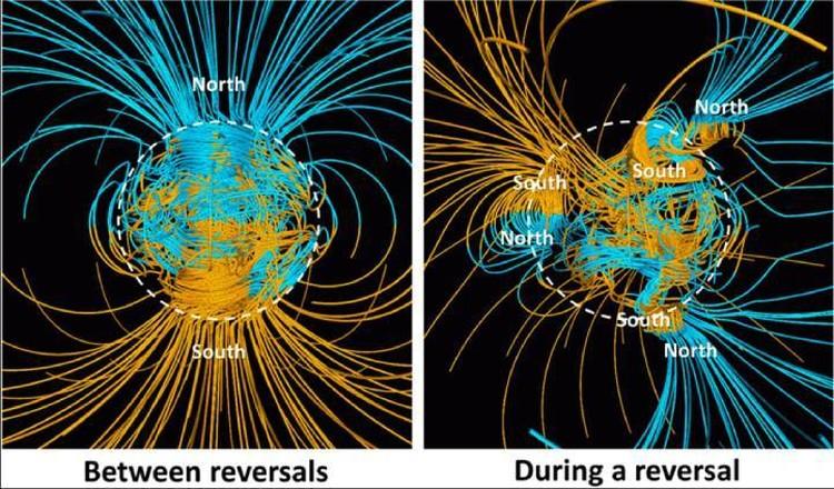 Во время переполюсовки магнитное поле планеты слабеет, а число полюсов множится. Одно слово - бардак, от которого многие страдают..