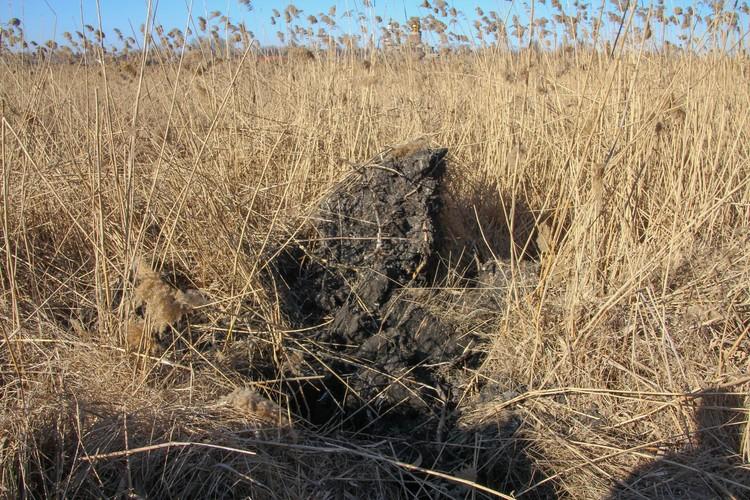 Землю от разрывов раскидало огромными кусками