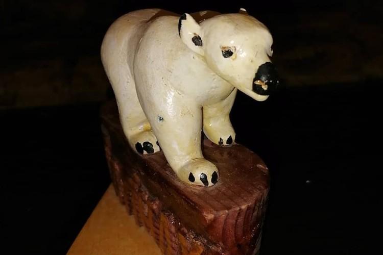 Белый медведь. Фото: личный архив Игоря Перевалова