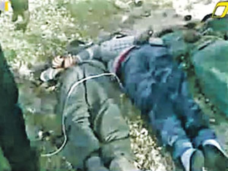 Солдат правительственных войск после допроса поставили на колени и расстреляли без суда и следствия.