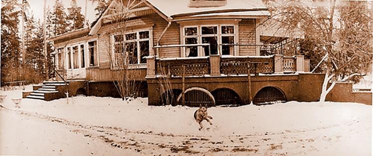 На этой даче в Петрово-Дальнем бывший первый секретарь жил после отставки. У дома - пес Арбат. Фото сделано в 1964 году. Публикуется впервые