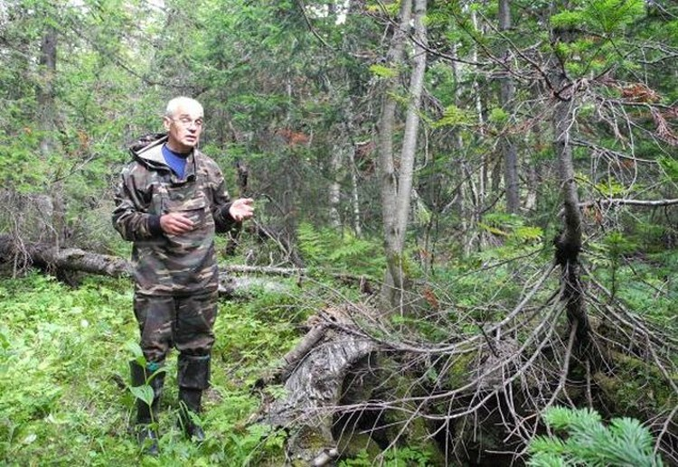 Валентин Якименко, участник поисков в марте 1959 года, показывает, где был найден схрон с продуктами.