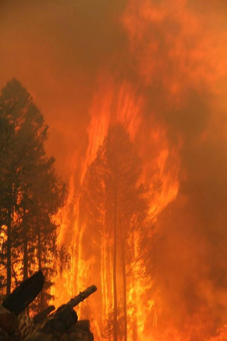 Температура такого пожара около 900 градусов. Фото: Виталий Греков