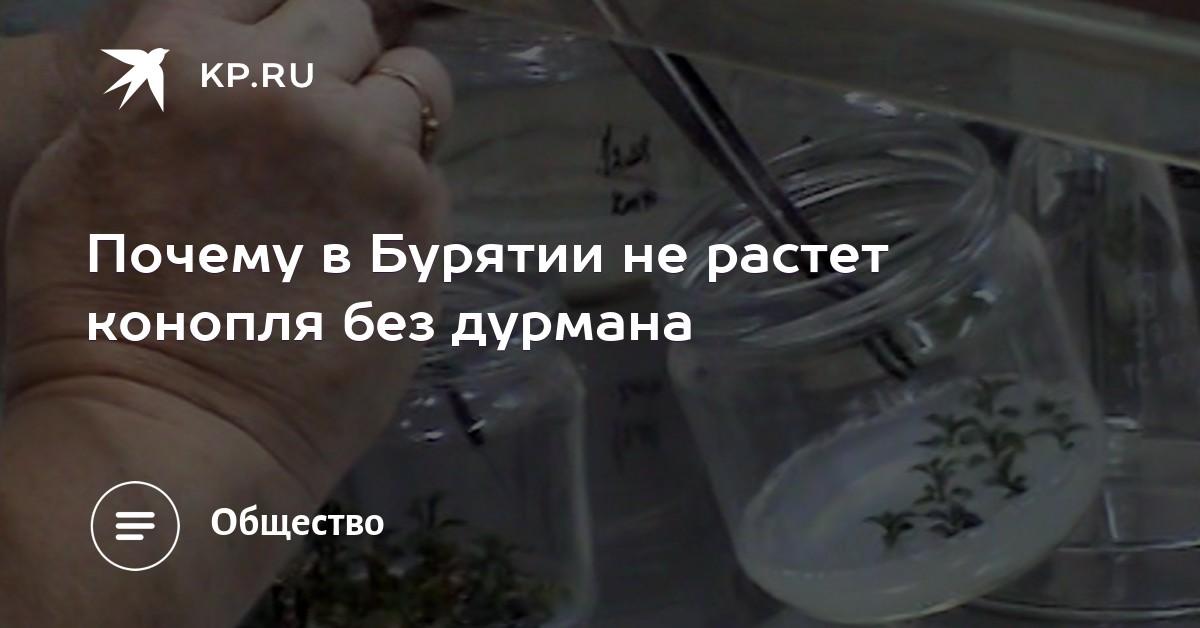 Бутират Сайт Великий Новгород Бутират отзывы Владимир