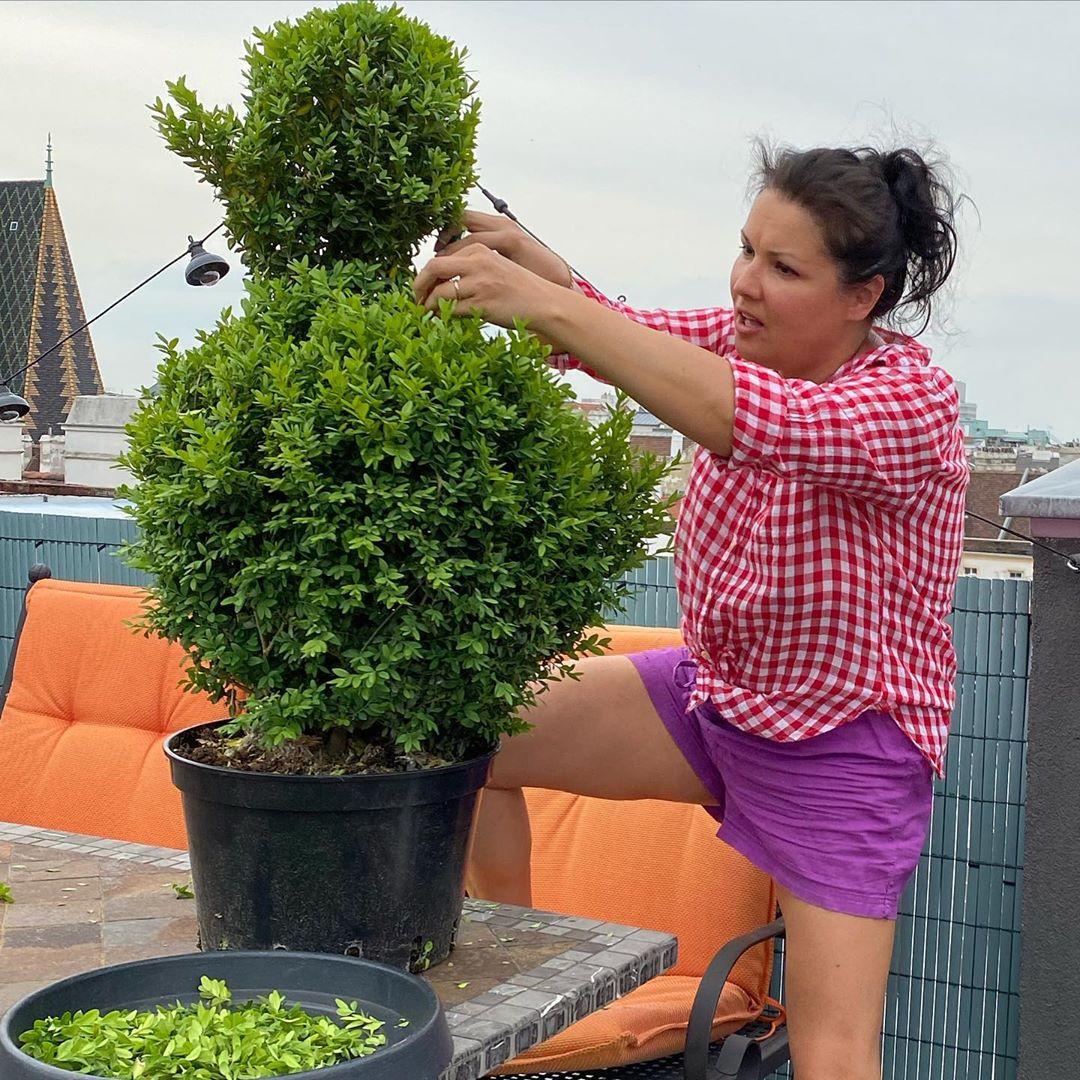 Donald Duck- welcome to our terrace Love to be gardener Дональд Дак , добро пожаловать на террасу! Мне понравилось быть садовником